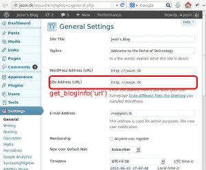 wordpress get_bloginfo url