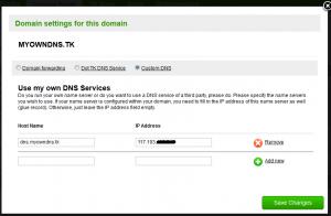 domain panel glue records